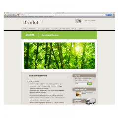 bamtuff-benefits